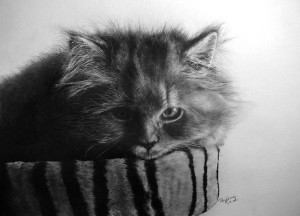 unbelievable-pencil-art-06